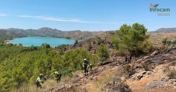 Extinguidos definitivamente los incendios declarados el pasado fin de semana en Liétor y Tobarra