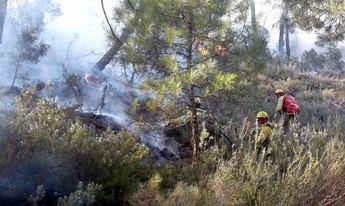 Los medios terrestres trabajando en el incendio de Paterna del Madera