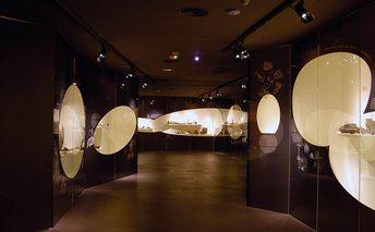 Lezuza celebra el Día Internacional de los Museos con diversas actividades