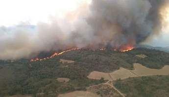 Gobierno gallego colabora con la UCLM en el estudio del impacto del incendio de Liétor (Albacete)