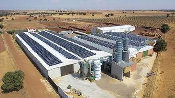 Los beneficios del autoconsumo fotovoltaico