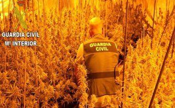 Detenida una banda organizada dedicada a tráfico de droga que llegó a establecerse en Albacete