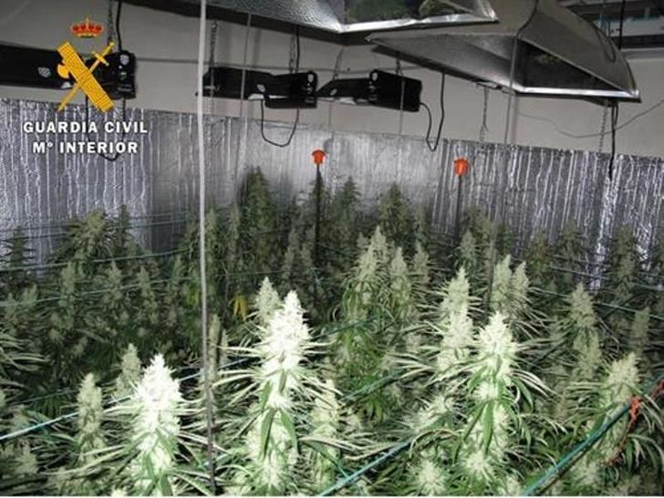 Una explosión y un apagón 'delataron' un cultivo intensivo de marihuana en Yuncos (Toledo)
