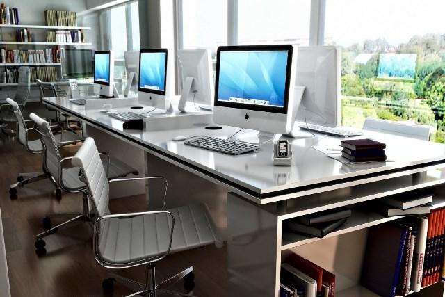 Lo que recomiendan los expertos para mejorar la productividad en la oficina