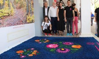 El Museo de las Alfombras de Serrín de Elche de la Sierra (Albacete) comenzará a ser una realidad el próximo año