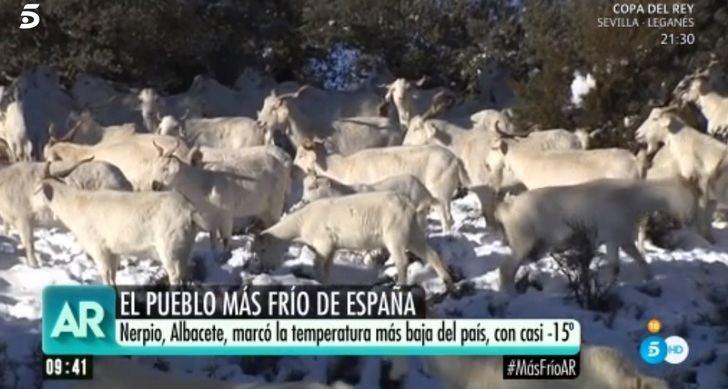 El frío sigue causando estragos en Castilla-La Mancha, ahora el hielo es protagonista