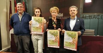 5.000 escolares participarán a la XXX Olimpiada Matemática, organizada por la Diputación de Albacete