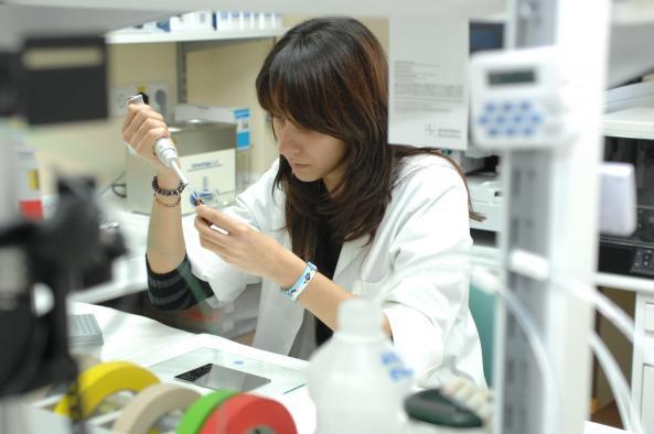 17 nuevos casos confirmados, 444 hospitalizados y 17 fallecidos por coronavirus en Castilla-La Mancha