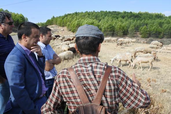 Agricultores y ganaderos de Castilla-La Mancha recibirán una nueva ayuda económica de 5 millones de euros