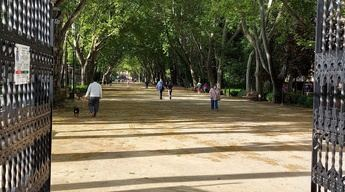 Parque Abelardo Sánchez de Albacete durante la desescalada.