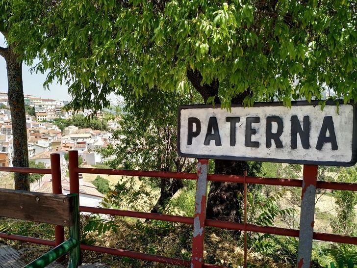 La historia de Paterna del Madera, en un trabajo bibliográfico en el que colabora la Diputación de Albacete