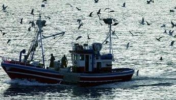 Entrevista a Megapesca2, ecommerce de pesca en España