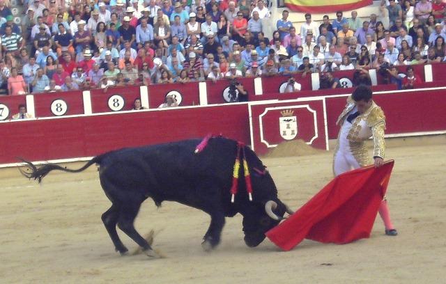 Rubén Pinar, ante su corrida en solitario en Albacete: 'Quiero mostrar que no soy sólo un torero de capacidad y oficio'