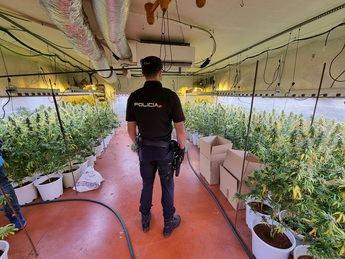Desmantelada una plantación de marihuana en el interior de una nave industrial de Fontanar (Guadalajara)