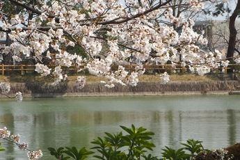 La primavera se iniciaba este sábado a las 10.37 y tendrá una duración de 92 días y 18 horas