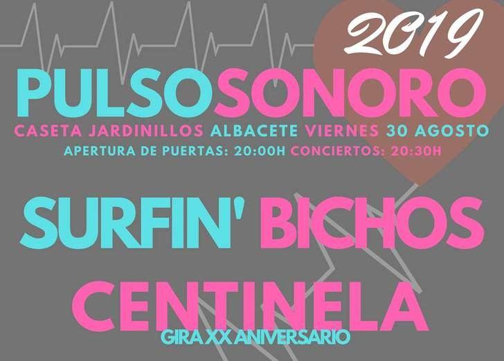 El día 30 de agosto, con entrada libre, llega la cuarta edición del Festival de Música de Albacete 'Pulso sonoro'