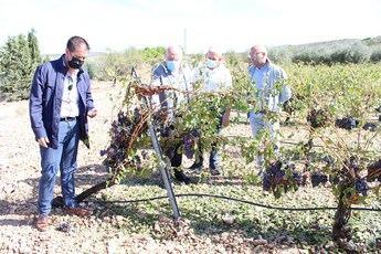 Recuento de los importantes daños sufridos en Viveros y Fuente-Álamo debido a las últimas tormentas