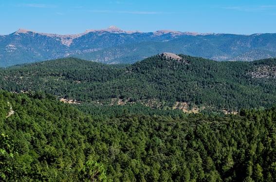 Rincones naturales que descubrir en Albacete