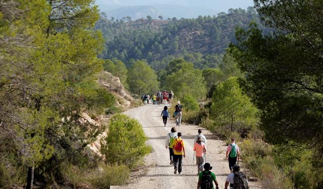 Las rutas de senderismo de la Diputación de Albacete llegan a La Manchuela y recorrerán Alborea