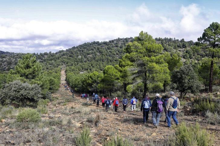 Las rutas de senderismo de la Diputación de Albacete llega a San Pedro