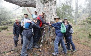 Los participantes de las rutas senderistas de la Diputación volvieron a quedar sorprendidos en Paterna del Madera