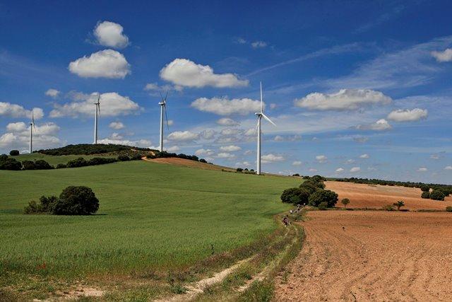 Villarrobledo acoge la próxima cita de las Rutas Senderistas de la Diputación de Albacete
