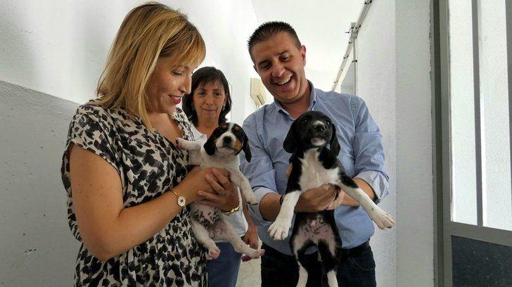 'Emperrados', de la Diputación de Albacete, referente en sensibilización con la población canina como protagonista