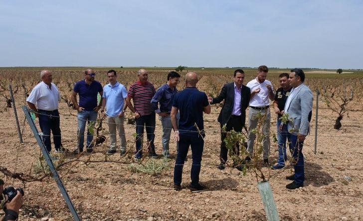 Los agricultores de Albacete muestran su preocupación por el clima y la falta de lluvias