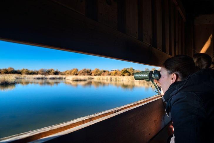 La Junta de Castilla-La Mancha prepara ya los premios regionales de turismo del 2019
