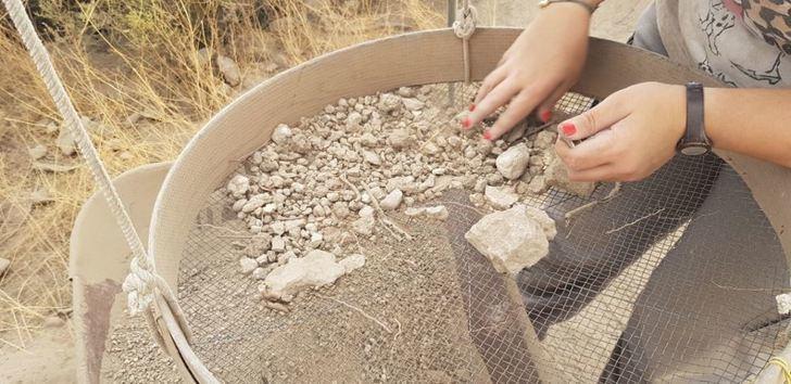 Nuevos estudios tratarán de conocer la dieta de los antiguos habitantes del Tolmo de Minateda