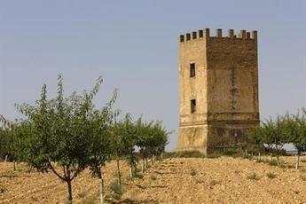 Declaradas Bien de Interés Cultural las 16 torres de telegrafía óptica de la provincia de Cuenca con la categoría de Sitio Histórico