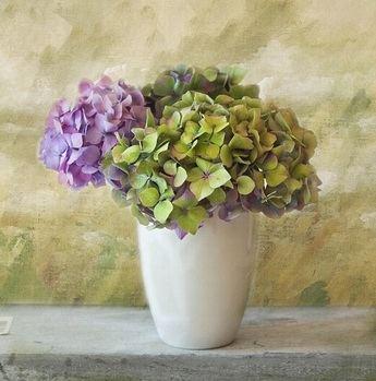 Un objeto de decoración ideal para el hogar
