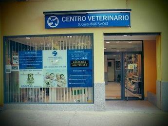 Clínica Veterinaria Dr. Gerardo Ibáñez Sánchez situada en la Calle Nuestra Señora de Araceli Nº4 (Albacete)
